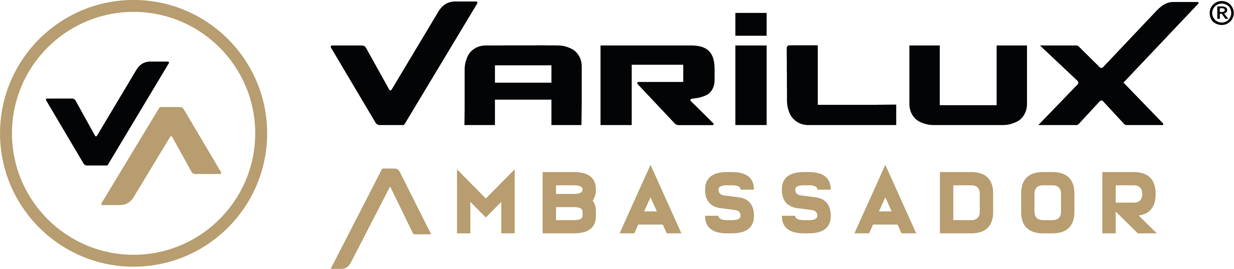 logo_Ambassador_trz negro